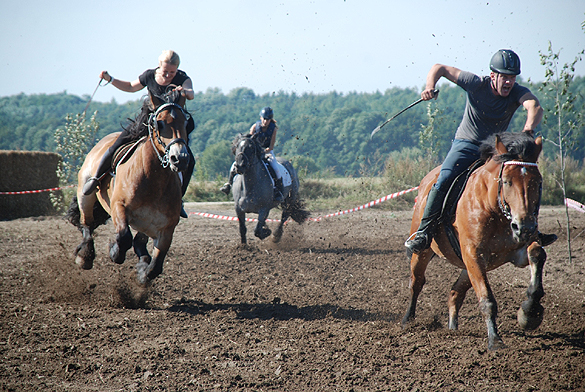 Pferd und Mensch gaben alles beim Stollenreiten.