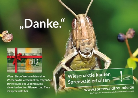 Spreewaldfreunde
