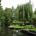 Ein Kanal im Spreewald